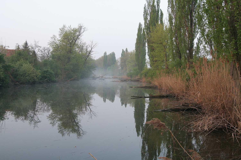 Brno-Tuřany jezera